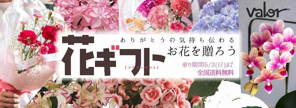 ありがとうの気持ち伝えるお花を贈ろう 承り期間3/5(日)まで 全国送料無料
